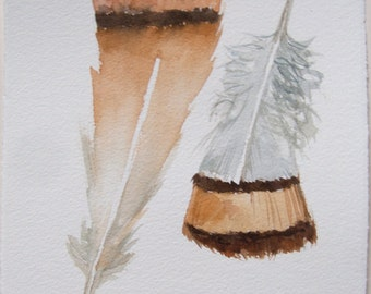 Beige feathers painting Watercolor art Feathers illustration Small watercolors 7,5 by 11 inches Home decor Nature art Original watercolors
