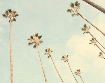 Diagonal Palms - Photographic Print - Palm Tree, Los Angeles, California, Bohemian, Eagle Rock, blue, boho, travel, Wall, Decor, Hanging