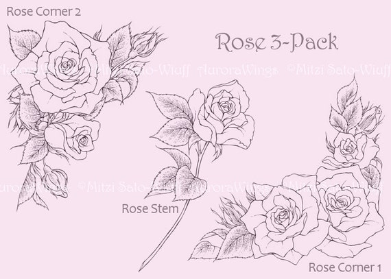 Digital Stamp - Roses 3 Pack  - digistamp - Instant Download - Corners and Stem - Floral Line Art for Cards & Crafts by Mitzi Sato-Wiuff
