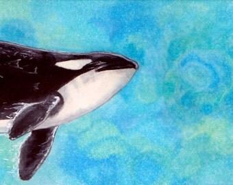 Orca Bookmark