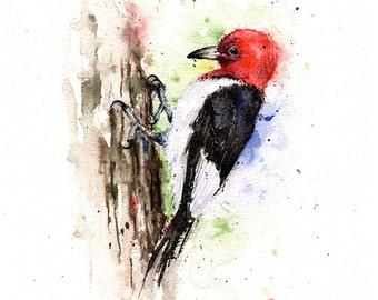 WOODPECKER ART PRINT - red headed woodpecker, watercolor woodpecker painting, woodpecker decor, woodpecker print, bird gift, bird wall art