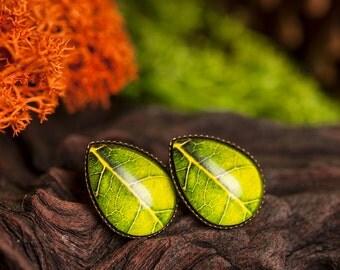 Green leaf earrings, tree leaf earrings, tear drop earrings, stud earrings, antique brass earrings, glass dome earrings