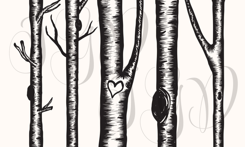 Birch Tree Digital Clip Art Hand Drawn Winter Aspen