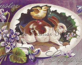 Antique Easter postcard of a brown and white bunny rabbit with a yellow chick riding on his back inside a giant egg INSTANT download
