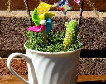 Tabletop Fairy Gardens, Tea Cup Terrarium, Mini Cactus Whimsical Terrarium