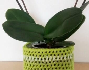 Free Crochet Pattern For Hemp Leaf : POT LEAF BEANIE CROCHET PATTERN ? Free Crochet Patterns