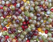 7x5mm Transparent Rainforest Picasso Mix Czech Glass Teardrop Beads - Qty 50 (BS120)