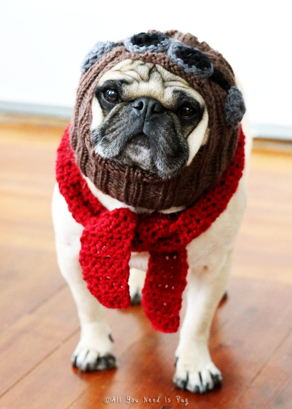 The Red Baron Dog Hat And Scarf Set Pug Hat Avaiator Hat