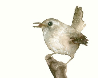 Wren Watercolor Print