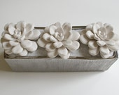 NEW! Large Tabletop Centerpiece, Three Large Succulent Sculptures in Etched Silver Glass Container with Sparkling White Sand