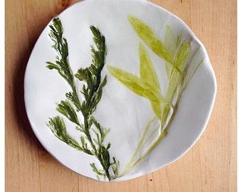 Greens Nature Dish