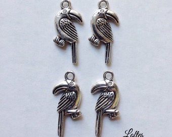 6 bird charms - SCB103