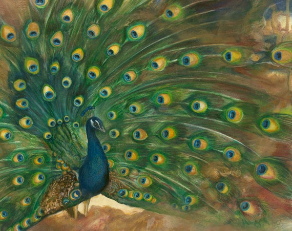 "Giclée print of original drawing by Amber Gorsline - ""Peacock"""