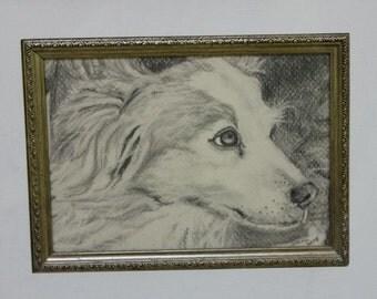 Custom Dog Portraits Pencil Drawings