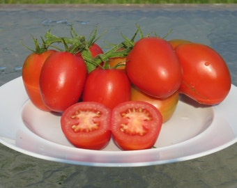 50+ De Barao Heirloom Tomato Seeds- Organic Seeds- Great For Canning/Sauce