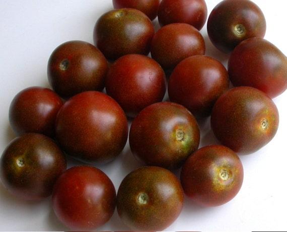 black cherry tomato seeds heirloom variety 40 seeds. Black Bedroom Furniture Sets. Home Design Ideas