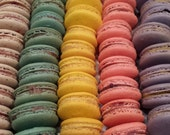 Boston Bonbon Handmade French Macarons Mixed Flavors of 12