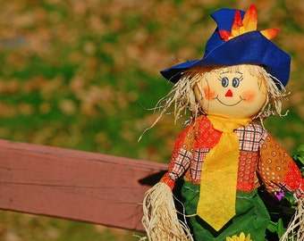 Scarecrow, Outdoor Photography, Nature Photography, Landscape, Garden Decor, Fall, Autumn
