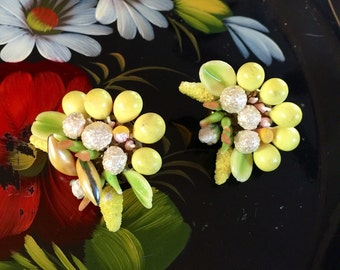 Fruit Salad Clip on Earrings