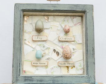 Wild bird eggs, Faux eggs, Blue Wood Frame, Framed Eggs, Speckled Eggs, Nests and Eggs, Labelled Eggs, Duck Egg Blue.
