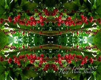 prints of GARDEN series ABSTRACT- PSYCHEDELIC