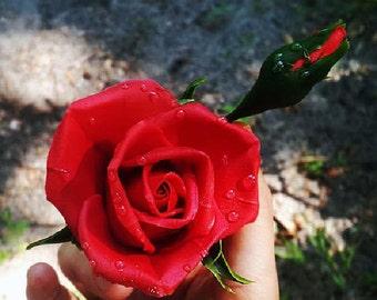 Hair Pin - Bright Red Rose