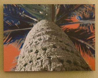"""Funky Palm Tree 13""""x9"""""""