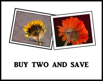 Buy Two and Save