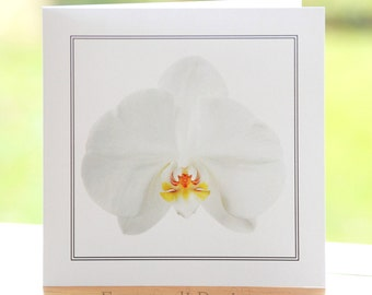 White orchid flower photograph, blank inside, square greetings card