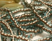 Destash : Czech 11/0 Seed Beads - Copper Lined Aqua with Bonus Leaf Beads