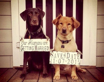 Save The Date Signs for the DOGS. Our Humans Are Getting Married. Photo Props. Rustic Save The Date.