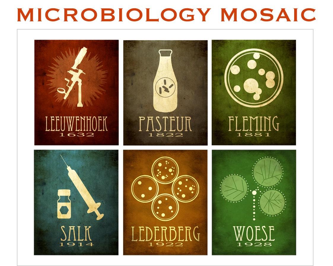 16x20 Microbiology Mosaic Art Print Pasteur Fleming Salk