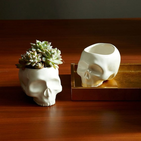 ceramic skull planter halloween home decor