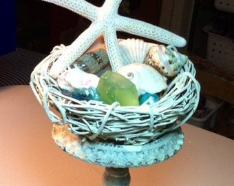 Beach Sea shells bird nest decoration arrangement