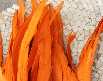 Coque feathers inOrange- length  11-14 inches in length-rooster tail feathers- Tahitian dance costume supply