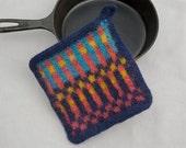 Modern Kitchen Pot Holder  Handmade Felted Wool Potholder Gourmet gift  Eco Friendly Hot Pad