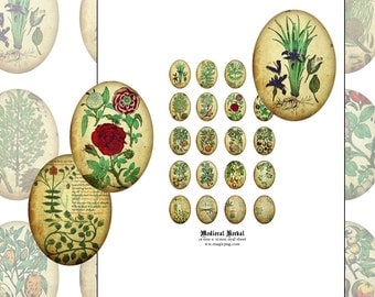 Medieval Herbal 18x25mm oval digital collage sheet 18x25 .70in x 1in