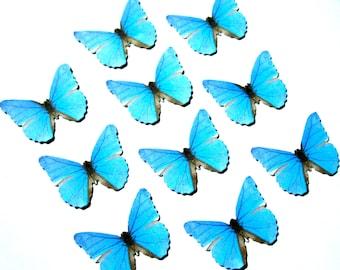 24 Light Blue Butterfly Paper Embellishment For diy wedding, butterfly school kit, butterfly cupcake topper, butterfly prop, DIY ACEO