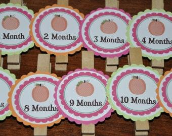 Pumpkin Photo Clips. Pumpkin. Fall Birthday. First Birthday. Set of 13. Newborn-12 Months. Month Clips. Pink. Green. Orange