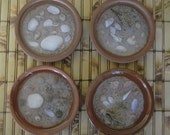 Terra Cotta Coasters, Set of 4, Sealife Coasters, Seashell Coasters, Barco de cabotaje