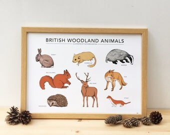 British Woodland Animals print - wildlife poster / nature wall art - fox , squirrel , badger , deer , hedgehog , rabbit , dormouse , stoat