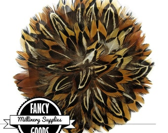SALE - 1 - Pheasant Feather Medallion -  Round Feather Pad - for - Millinery - Fascinators - Headbands