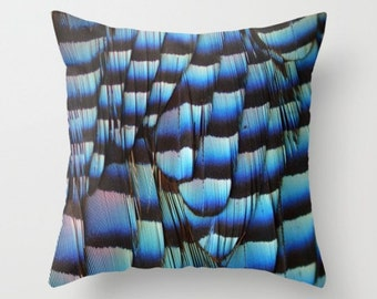 Blue Jay Wing Pillow Cover Natural History Nature Pillow Woodland Bird Blue Jay Print Blue Feathers Black Bands Nature Decor