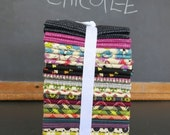 CHICOPEE Complete Fat Quarter Bundle - Entire Collection - Manufacturer Precut 30 FQ's - Denyse Schmidt for Free Spirit