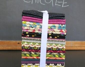 CHICOPEE Complete Fat Quarter Bundle - Entire Collection - Manufacturer Precut 30 FQ's - Denyse Schmidt for Free Spirit