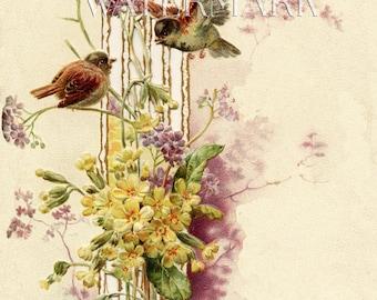 Sparrows Birds Violets Victorian Post Card Ephemera Altered Art Vintage Scrapbook Instant Digital Download Printable 5 by 7 in