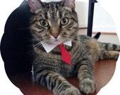 Classic Tie Cat Collar >> Holiday Prints { 14 Options } Chariots Afire Pet Costume Cat Halloween Kitten Collar Necktie Kitty Business Meow