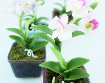 Miniature Plants Polymer Clay Flowers Supplies for Dollhouse, Tropical Dendrobium, 1 piece