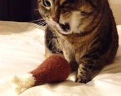 Drumstick Cat Toy