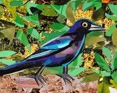 Inquisitive Birdy, 5x7 inch ORIGINAL COLLAGE ART